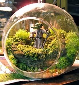 Acheter Terrarium Plante : terrarium pour plantes tuto pour le faire et plus de 70 super mod les ~ Teatrodelosmanantiales.com Idées de Décoration