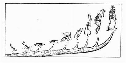 Evolution Evolved Human Timeline Chart Ph Theory