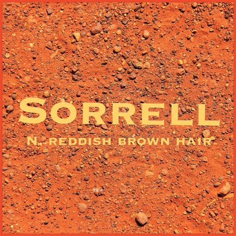 Brown Hair And Brown Meaning by Boys Name Sorrell Name Meaning Reddish Brown Hair Name