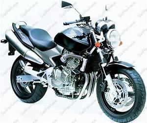 Honda Moto Orleans : honda hornet 600 2003 2004 canbus xenon hid conversion kit 4300k 5000k 6000k 8000k ~ Maxctalentgroup.com Avis de Voitures