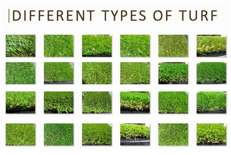 list of types of grass artificial grass faq questions about artificial grass