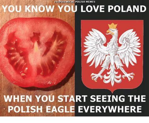 Polish Memes - funny poland memes of 2017 on sizzle africa