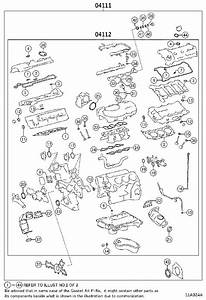 Diagram  Raptor 350 Engine Gasket Diagram Full Version Hd