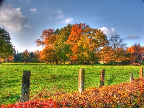 Herbstlandschaft - piqs.de - Bilddatenbank, Bilder