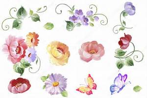 set watercolor floral elements leaves and flowers With wedding invitation with watercolor leaves and butterflies