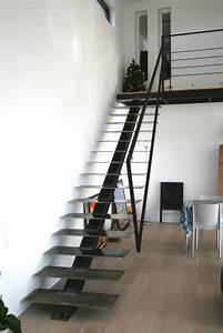 Escalier Droit. double limons tokyo pour escalier droit en acier. le ...