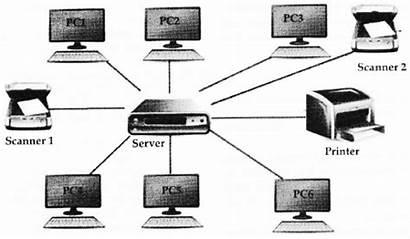 Topology Bus Scanners Diagrammatically Printer Pcs Server