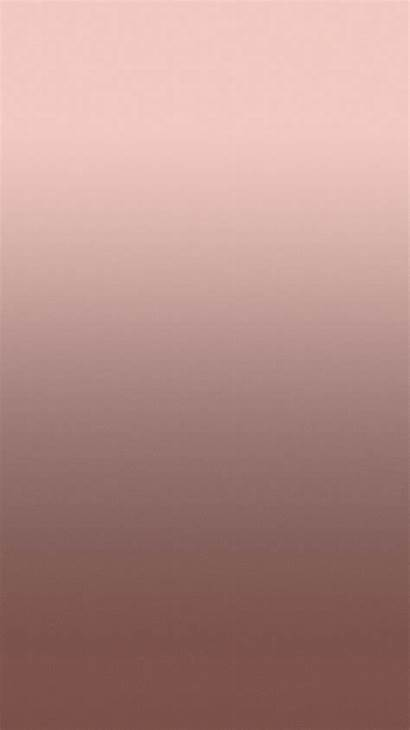Rose Gold Background Wallpapers Iphone Backgrounds Roses