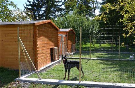 elevage canin vente de chien 224 vrigny 45 les oursons
