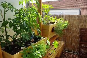 urban gardening auf dem balkon urban farming eigene With whirlpool garten mit tauben auf dem balkon loswerden