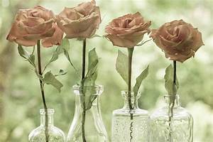 Designer Bottles Cara Clark Design What 39 S Not To Love About Flowers In