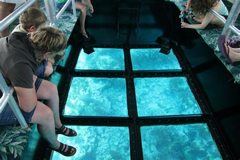 Glass Bottom Boat Tours In Florida the hyde s february 2012
