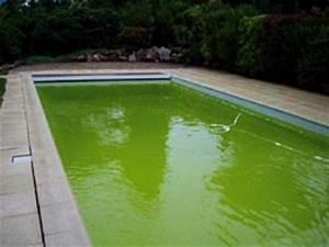 Nettoyer Piscine Verte : piscine autoport e algues vertes ~ Zukunftsfamilie.com Idées de Décoration