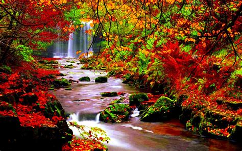 Falling Leaves Live Fall Backgrounds by Autumn River Hd Photographs Page 2 Of 3 Wallpaper Wiki