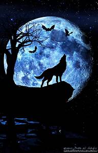 Wolf howling at the moon, composite art_7393141648_l ...