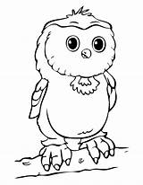 Owl Coloring Spectacled 21kb 1230px sketch template