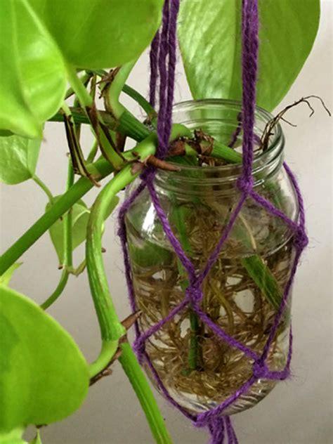 macrame plant hanger eco organic garden  ocp