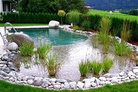 Swimming Pond : How To Build A Natural Swimming Pool Diy