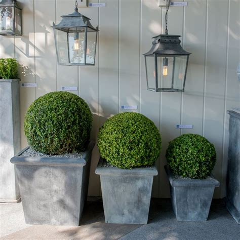 Square Outdoor Planters by 25 Best Ideas About Square Planters On Wood