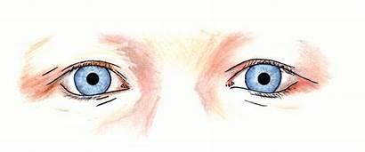 Pupille Licht Sehen