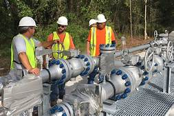 US set to open nearly 200 natural gas plants…