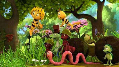 Bee Maya Series Cartoon Animation Studio