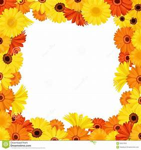 Frame With Orange And Yellow Gerbera Flowers. Vector ...