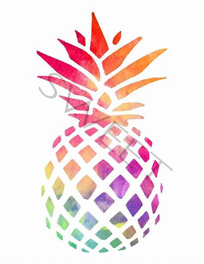 Pineapple Watercolor Clipart Drawing Pineapples Graphics Clip