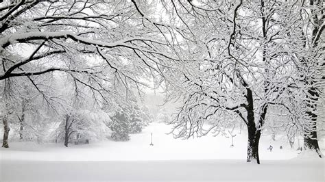 Background Images Snow by Snow Wallpapers Wallpaper Cave