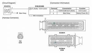 Hyundai Veloster  Canister Close Valve  Ccv   Schematic