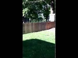 Cloture Chien Jardin : il construit une cloture pour son chien dans le jardin fail video 2tout2rien ~ Melissatoandfro.com Idées de Décoration