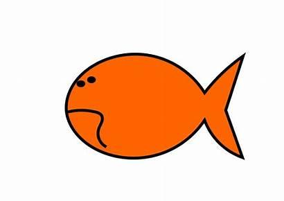 Goldfish Clipart Clip Fish Cracker Gold Geometry