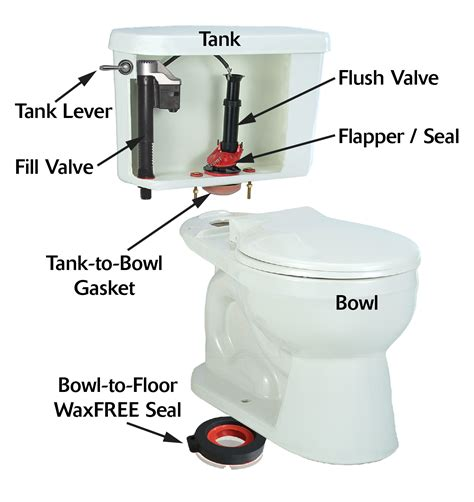 Parts Of A Water Closet by How Does A Toilet Work Anatomy Of A Toilet Korky
