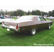1973 Fury III Rear Side