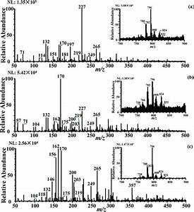 Metabolic Effects Of Clenbuterol And Salbutamol On Pork Meat Studied Using Internal Extractive
