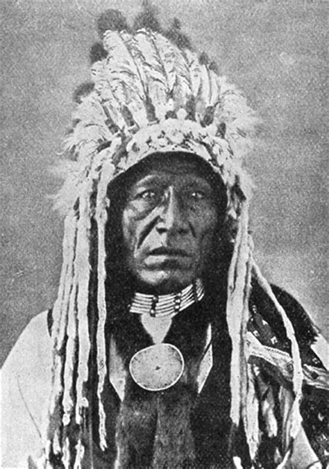 Indian Chief Picture by American Indian Pictures Blackfoot Indian Tribe
