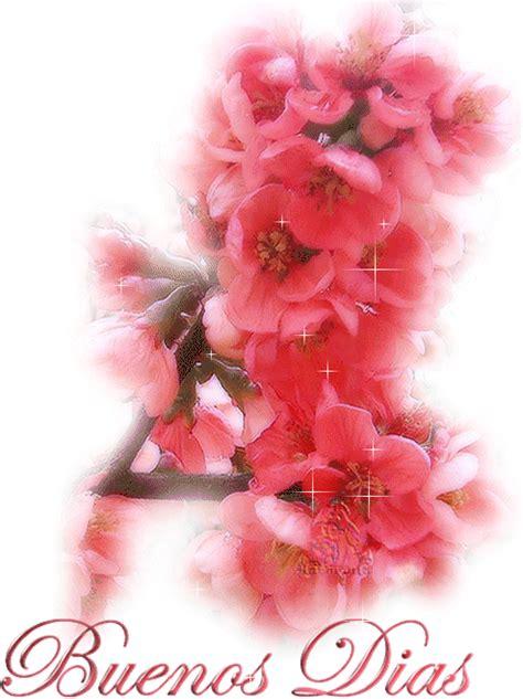 Hermosas flores rosas para darte los Buenos Dias Buenos