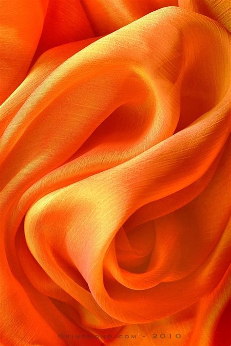 what color is an orange 140 best mandarin orange images on mandarin