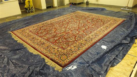 best area rugs for pets cleaning an area rug pet urine home furniture design ideas
