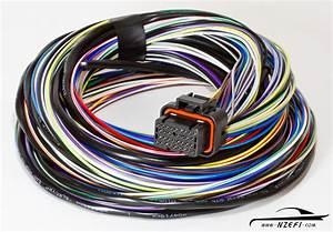 Link G4    G4  Wiring Loom B  U2013 2 5 Metre