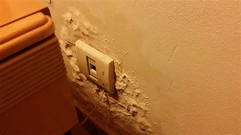 No power to fridge. Seal around door missing. - Picture of ...