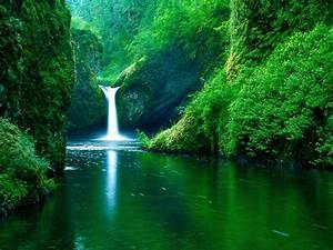 wallpaper: Beauty Of Nature Desktop Wallpapers