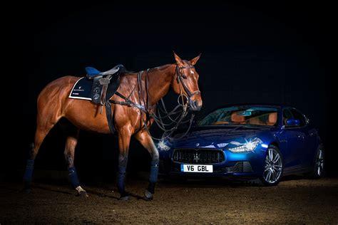 maserati luxury maserati luxury polo horse saddle is a thing of unique