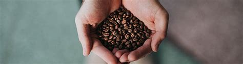 Since 1982, coffee express company has been a leading specialty coffee roaster in michigan. Plymouth Coffee Bean Company | Menu | Local Coffee