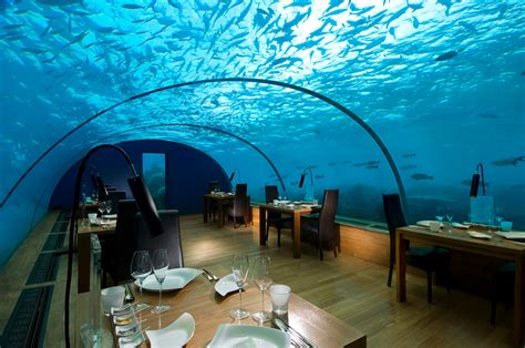 underwater adventures at conrad maldives rangali island static tours journal