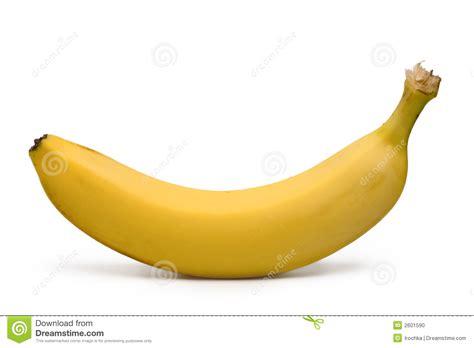 yellow white yellow banana stock photo image 2601590