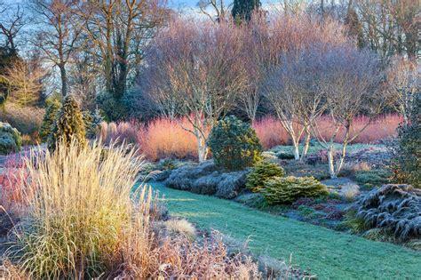 winter garden   bressingham gardens puutarha