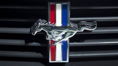 Mustang Ford Cool Wallpapers Shelby Logos Peeve