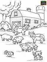 Farm Coloring Preschool Drawing Farmer Vector Whitesbelfast Credit sketch template