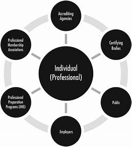 Figure 1  Dynamic Spheres Of Influence Among Stakeholders